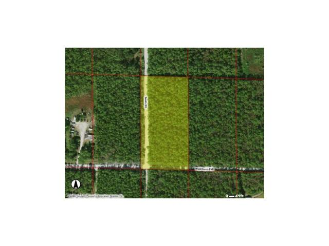 Washburn Ave, Naples, FL 34117 (MLS #217054132) :: The New Home Spot, Inc.