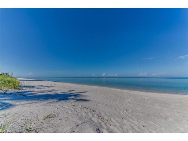 28032 Oceana Dr, Bonita Springs, FL 34135 (MLS #217054757) :: Florida Homestar Team