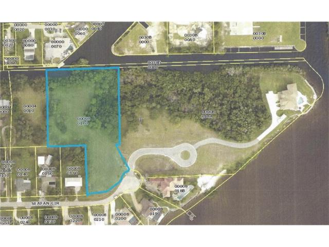 1750 Seafan Cir, North Fort Myers, FL 33903 (MLS #217055046) :: The New Home Spot, Inc.