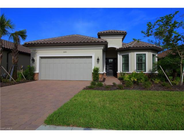 8843 Vaccaro Ct, Naples, FL 34119 (MLS #217056149) :: The New Home Spot, Inc.