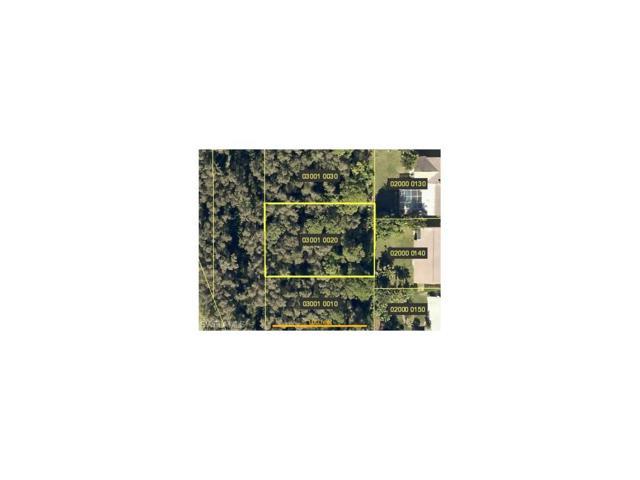 Tropicana Ave, Estero, FL 33928 (MLS #217056349) :: The New Home Spot, Inc.