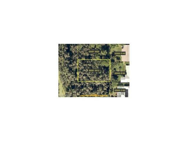 Tropicana Ave, Estero, FL 33928 (MLS #217056355) :: The New Home Spot, Inc.