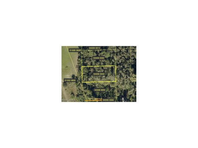 Americana Ave, Estero, FL 33928 (MLS #217056373) :: The New Home Spot, Inc.