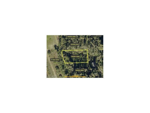 Americana Ave, Estero, FL 33928 (MLS #217056383) :: The New Home Spot, Inc.
