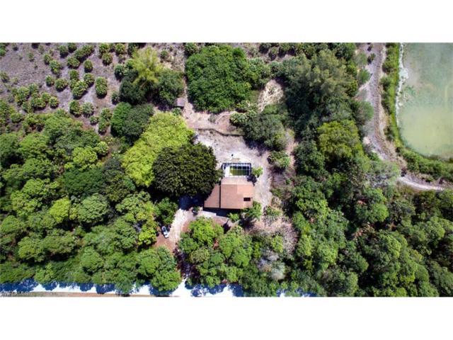 27061 Rue De Paix, Bonita Springs, FL 34135 (MLS #217060661) :: The New Home Spot, Inc.