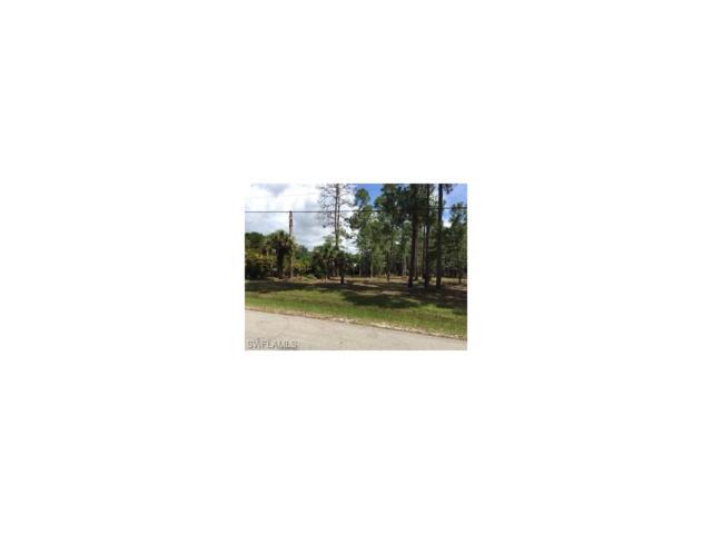Standing Oaks Ln, Naples, FL 34119 (MLS #217061663) :: The New Home Spot, Inc.