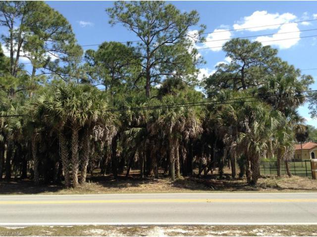 Oakes Blvd, Naples, FL 34119 (MLS #217061678) :: The New Home Spot, Inc.