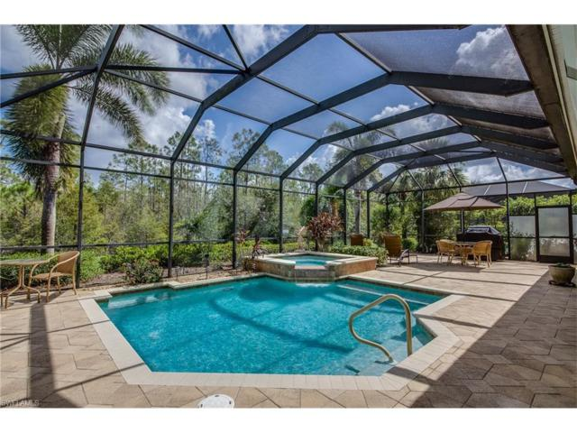 12371 Villagio Way, Fort Myers, FL 33912 (MLS #217062057) :: The New Home Spot, Inc.