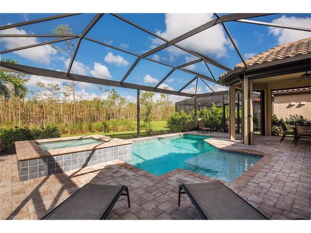 8857 Vaccaro Ct, Naples, FL 34119 (MLS #217062868) :: The New Home Spot, Inc.