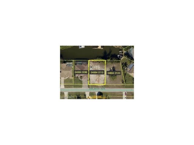 1625 SW 44th Ter, Cape Coral, FL 33914 (MLS #217063457) :: The Naples Beach And Homes Team/MVP Realty