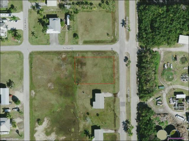 402 Copeland S, Everglades City, FL 34139 (MLS #217063474) :: The New Home Spot, Inc.