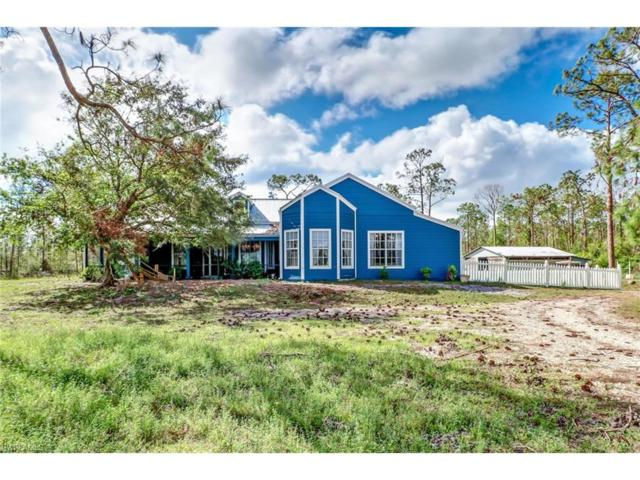 21071 Six Ls Farm Rd, Estero, FL 33928 (#217064367) :: RealPro Realty