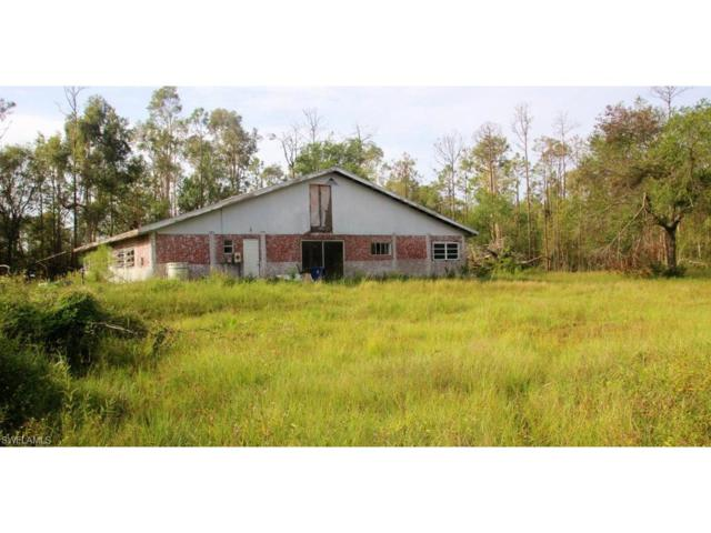 6861 Staley Farms Rd, Fort Myers, FL 33905 (MLS #217064907) :: The New Home Spot, Inc.