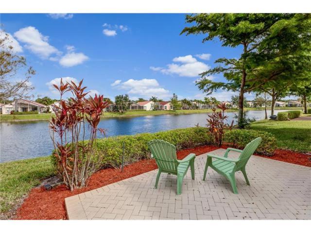 8905 Cascades Isle Blvd, Estero, FL 33928 (MLS #217067523) :: The New Home Spot, Inc.