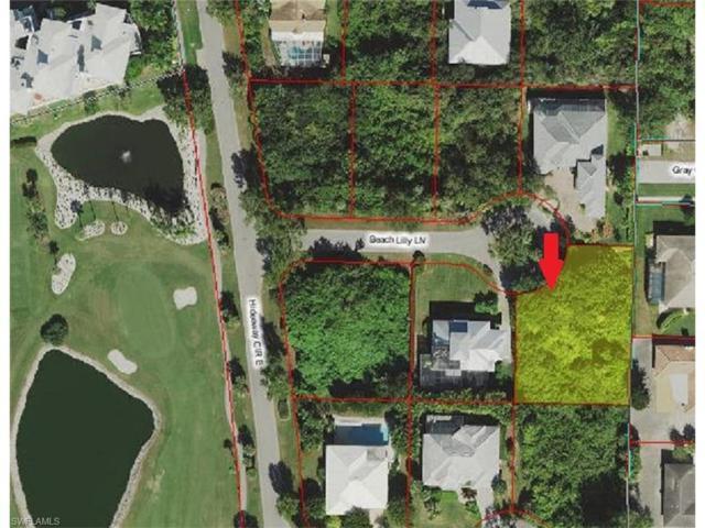 397 Beach Lilly Ln, Marco Island, FL 34145 (MLS #217071731) :: Clausen Properties, Inc.