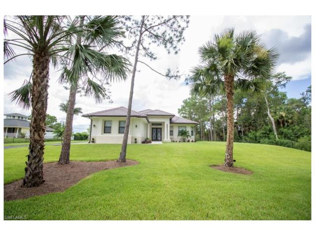 4860 12th St NE, Naples, FL 34120 (MLS #217077453) :: The Naples Beach And Homes Team/MVP Realty
