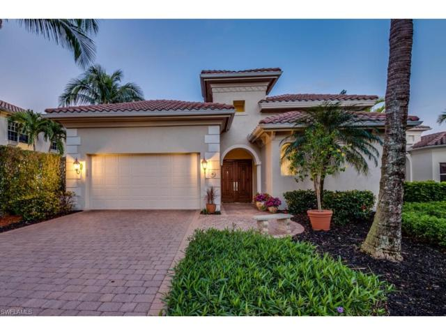 22025 Natures Cove Ct, Estero, FL 33928 (#217077504) :: Equity Realty