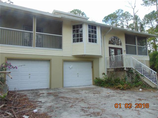 25336 Papillion Dr, Bonita Springs, FL 34135 (MLS #218006620) :: The New Home Spot, Inc.