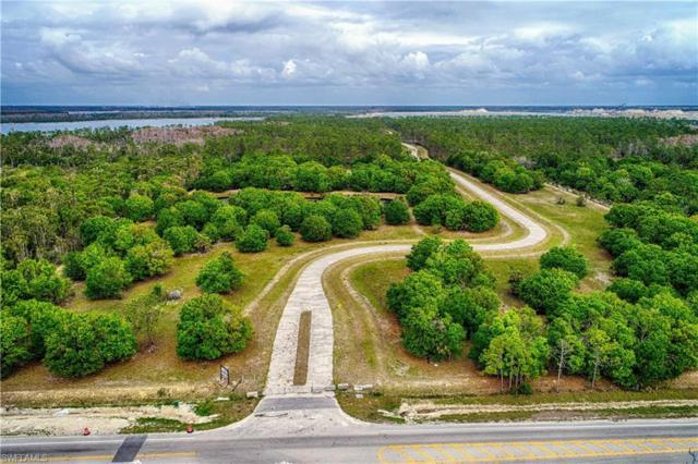 19549 Panther Island Blvd, Fort Myers, FL 33913 (MLS #218015196) :: Kris Asquith's Diamond Coastal Group