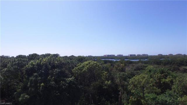 254 Audubon Blvd, Naples, FL 34110 (MLS #218017916) :: The Naples Beach And Homes Team/MVP Realty