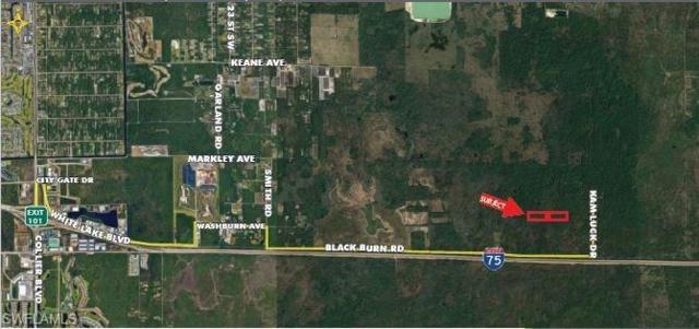 17+/- Acrs Kam Luck Drive, Naples, FL 34117 (MLS #218022241) :: The New Home Spot, Inc.