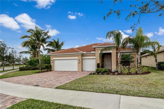 28021 Tiger Barb Way, Bonita Springs, FL 34135 (MLS #218028983) :: RE/MAX DREAM