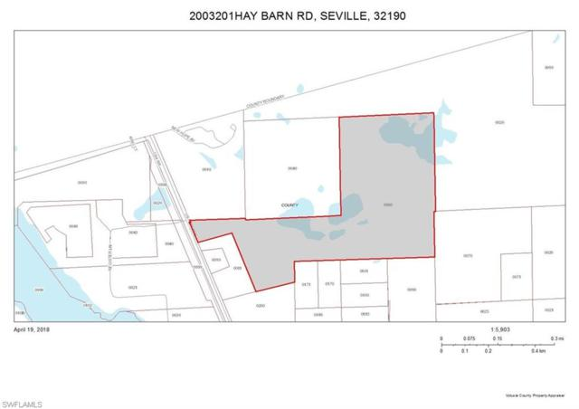2003201 N Us Hwy 17 Hwy, SEVILLE, FL 32190 (MLS #218029856) :: The Naples Beach And Homes Team/MVP Realty