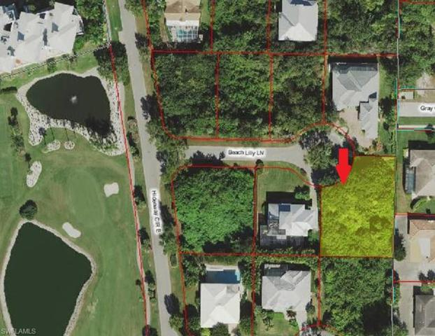 397 Beach Lilly Ln, Marco Island, FL 34145 (MLS #218037809) :: The New Home Spot, Inc.
