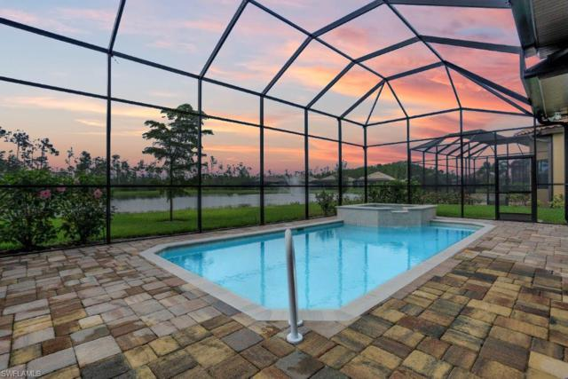 11313 Paseo Dr, Fort Myers, FL 33912 (MLS #218039368) :: The New Home Spot, Inc.