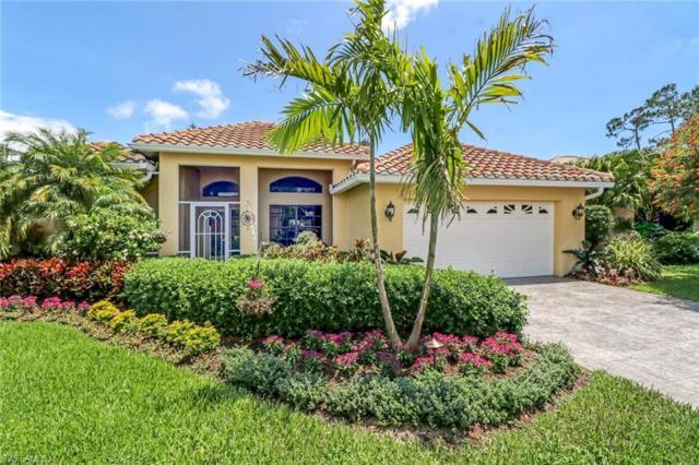 12666 Buttonbush Pl, Bonita Springs, FL 34135 (#218039654) :: Equity Realty