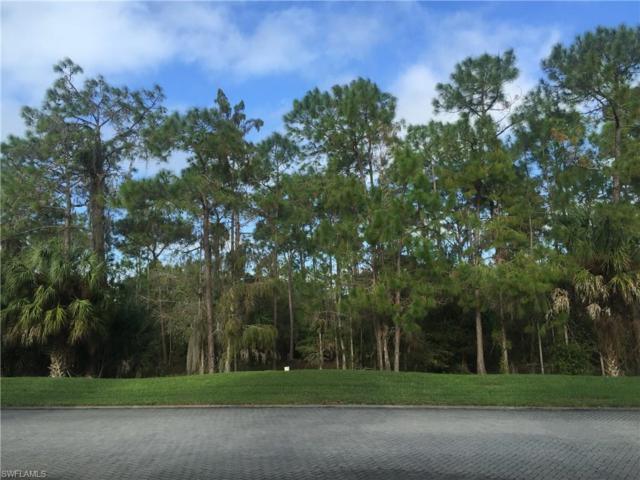 4205 Brynwood Dr, Naples, FL 34119 (MLS #218043213) :: Clausen Properties, Inc.