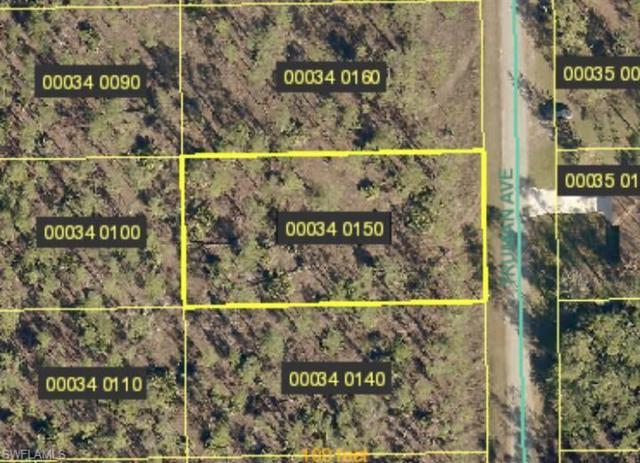 2205 Truman Ave, Alva, FL 33920 (MLS #218043899) :: Clausen Properties, Inc.