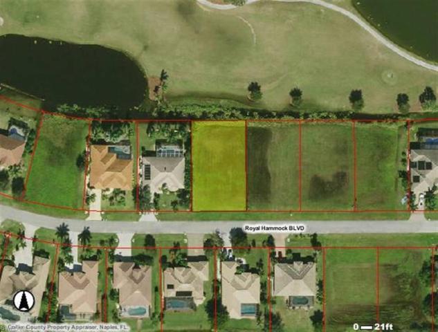 18420 Royal Hammock Blvd, Naples, FL 34114 (MLS #218044649) :: Clausen Properties, Inc.