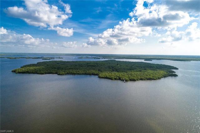 Mound Key, Estero, FL 34134 (MLS #218050863) :: RE/MAX DREAM