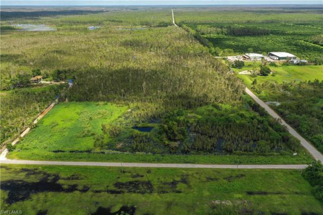 334 Sabal Palm Rd, Naples, FL 34114 (MLS #218058044) :: RE/MAX DREAM