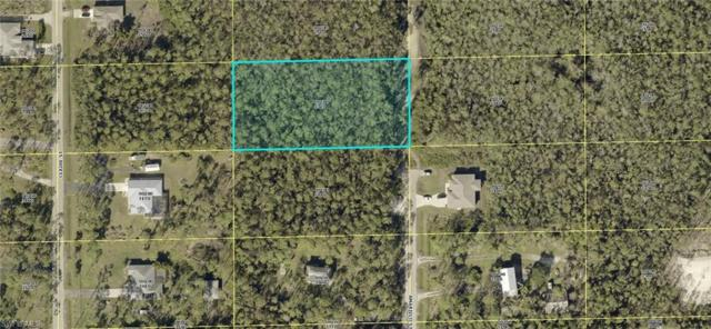 24300 Amarillo St, Bonita Springs, FL 34135 (MLS #218060951) :: The New Home Spot, Inc.