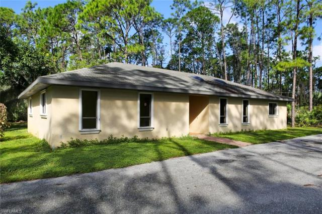 25230 Busy Bee Dr, Bonita Springs, FL 34135 (MLS #218066944) :: The New Home Spot, Inc.