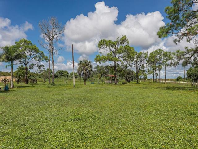 11053 Riggs Rd, Naples, FL 34114 (MLS #218067963) :: RE/MAX Realty Group