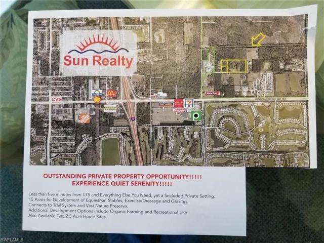 13337 Snell Ln, Bonita Springs, FL 34135 (MLS #218069685) :: RE/MAX Realty Group