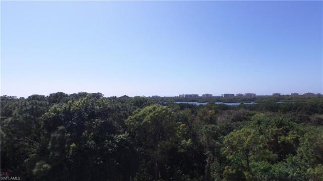 254 Audubon Blvd, Naples, FL 34110 (#218070659) :: Equity Realty