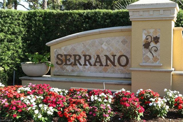 27132 Serrano Way, Bonita Springs, FL 34135 (MLS #218073656) :: Sand Dollar Group