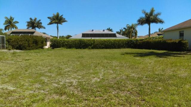 1434 Biscayne Way, Marco Island, FL 34145 (MLS #218074419) :: RE/MAX Realty Group