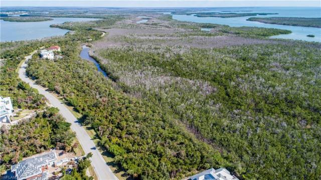 1090 Blue Hill Creek Dr, Marco Island, FL 34145 (MLS #218082713) :: RE/MAX Radiance