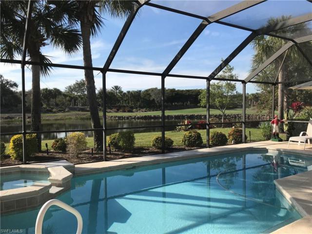 23340 Foxtail Creek, Estero, FL 34135 (MLS #219000376) :: Clausen Properties, Inc.