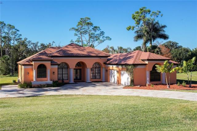 18061 Riverchase Ct, Alva, FL 33920 (MLS #219000415) :: The Naples Beach And Homes Team/MVP Realty