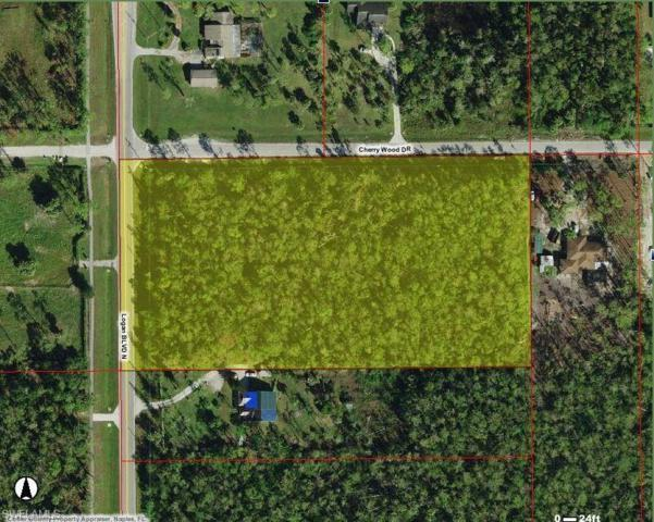 Cherry Wood Dr, Naples, FL 34119 (MLS #219003528) :: RE/MAX Realty Group