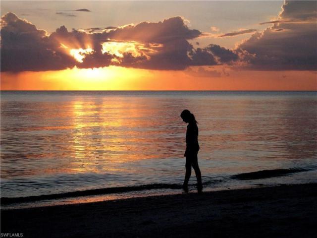 25780 Old Gaslight Dr, Bonita Springs, FL 34135 (MLS #219006141) :: The Naples Beach And Homes Team/MVP Realty