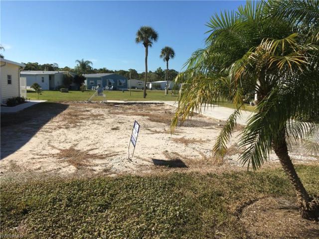 146 Norfolk Pine Ln, Naples, FL 34114 (MLS #219006323) :: Clausen Properties, Inc.
