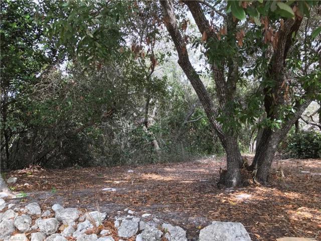 1279 Blue Hill Creek Dr, Marco Island, FL 34145 (MLS #219010204) :: RE/MAX Radiance