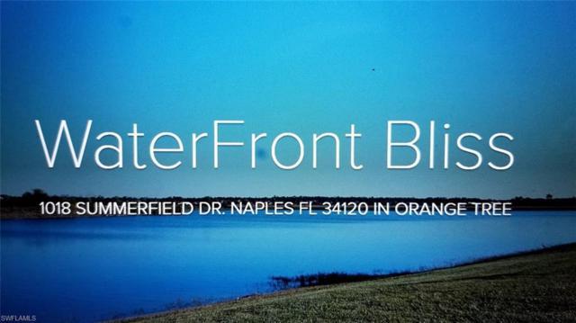 1018 Summerfield Dr, Naples, FL 34120 (MLS #219010380) :: RE/MAX DREAM